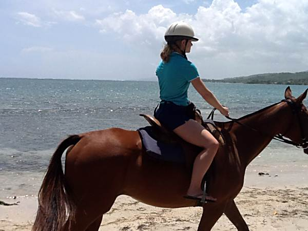 Chukka Horseback riding